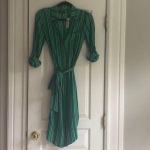 Beautiful Anthropologie green striped shirt dress